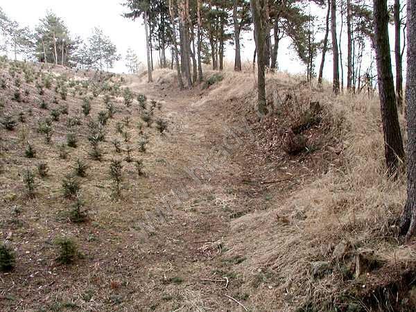 Hrad Bobrová