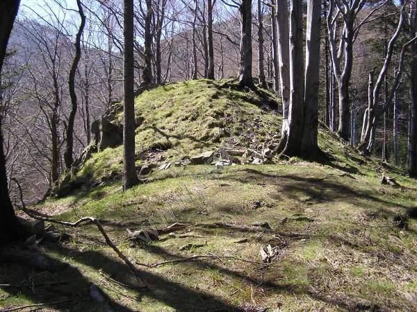 Hrad Čeladná
