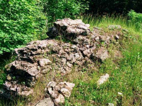 Hrad Dobřany