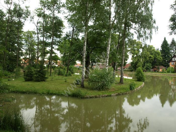 Tvrz Dolní Bukovsko