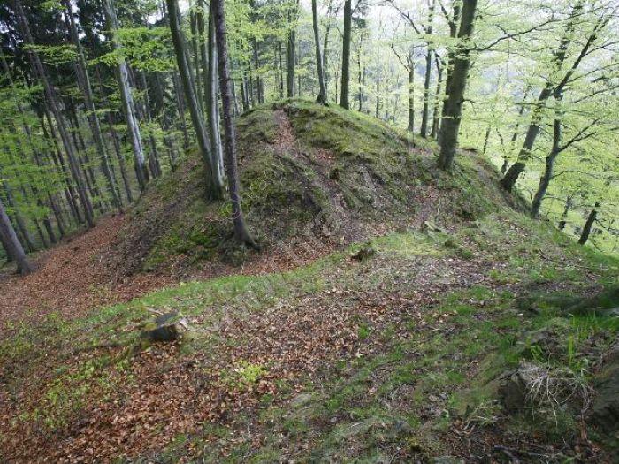 Hrad hrad u Brandova