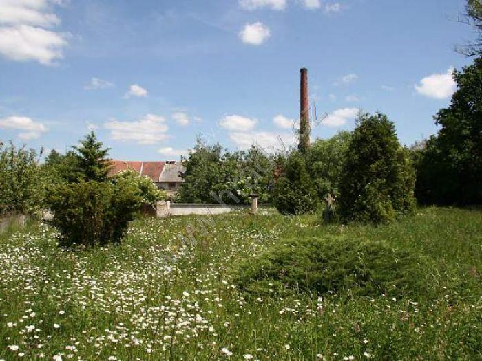 Hrad Janovice nad Úhlavou