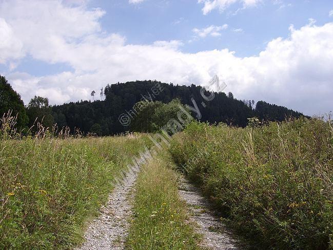 Hrad Králova Hora