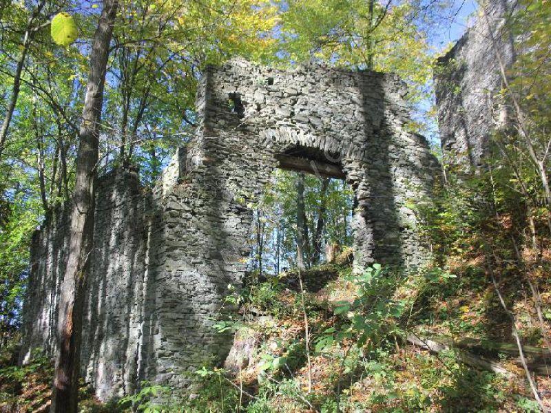 Hrad Nový hrad (u Hanušovic)