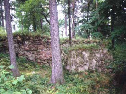 Hrad Vitějovice