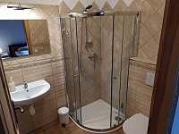 Pokoj # 2 s vlastní koupelnou - chalupa k pronájmu Trojanovice