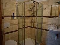 Pokoj #4 s vlastní koupelnou - Trojanovice