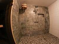 Ochlazovna u sauny - pronájem chalupy Krásná