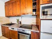 Apartmán PREMIUM 37 m2 - plně vybavená kuchyň - Bílá