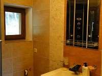 Apartmán U Fíka - apartmán k pronájmu - 10 Ostravice