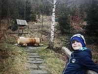 Horská vila - chata - 39 Nýdek