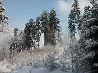 Zimni pohled z okna chalupy