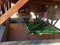 Stolní tenis + šipky - apartmán k pronajmutí Mosty u Jablunkova