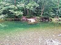 Řeka Morávka je letos krásně čistá. Koupaní jedna báseň. - chata k pronajmutí Skalice