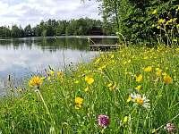 Radhošťský rybník - apartmán - srub k pronájmu - 3 Trojanovice