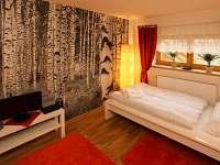 Frýdlant nad Ostravicí - rekreační dům k pronájmu - 21