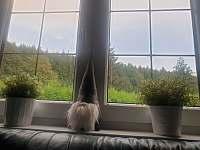 výhled z okna - Trojanovice