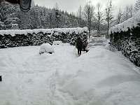 zima 2021, parkovani v zahrade - chata k pronájmu Trojanovice