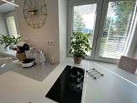Apartmány Veselá Lama - apartmán k pronájmu - 10 Ostravice