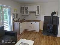 Apartmánový pokoj pro 4 osoby s kuchyní a krbovými kamny. - chata k pronájmu Nýdek