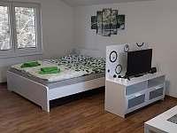 Apartmánový pokoj pro 4 osoby s kuchyní, krbovými kamny, TV a rohovou sedačkou. - Nýdek