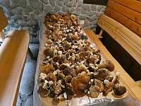 tak se u nás suší houby - Řeka