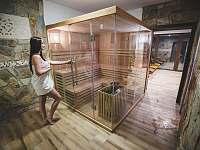 finská sauna - ubytování Písečná