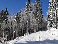Bežecké trasy v okolí - Horní Bečva