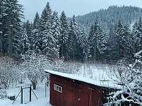 Výhled na les ze zadní části zahrady - Horní Bečva