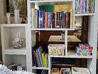 Knihovna, DVD a hry pro děti. - pronájem chaty Horní Bečva