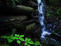 Okolní příroda - Návsí
