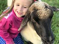 kamarádské ovečky - chalupa k pronájmu Valašská Bystřice
