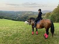 možnost doobjednání jízd na koni - Valašská Bystřice