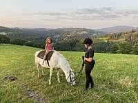 možnost doobjednání jízd na poníkovi - Valašská Bystřice
