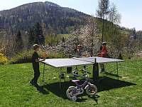 Petrův domeček, stolní tenis - chata k pronájmu Nýdek