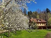 Jaro u nás - Frýdlant nad Ostravicí - Metylovice