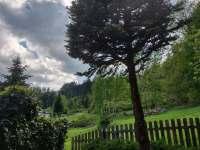Pohled z terasy - Frýdlant nad Ostravicí - Metylovice