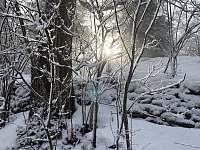 Les u chalupy na Gruňu - Hrádek