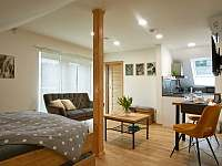 Small - apartmán k pronájmu Prostřední Bečva
