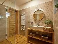 Wellness koupelna - apartmán k pronájmu Prostřední Bečva