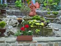 Zahrada - chalupa k pronájmu Dolní Lomná