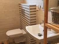 Koupelna přízemí - chalupa k pronajmutí Horní Bečva