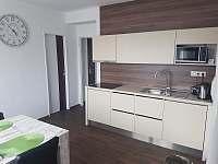 Kuchyně - apartmán k pronajmutí Rožnov pod Radhoštěm
