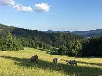 Prostřední Bečva -