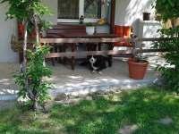 Pergola - apartmán k pronájmu Hutisko-Solanec