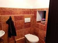 WC v přízemí - pronájem chalupy Palkovice