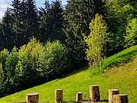 Medvědí chata pod Lysou horou - pronájem chalupy - 25 Ostravice