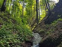 Medvědí chata pod Lysou horou - chalupa - 27 Ostravice