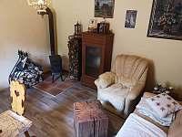 Jotul v obýváku - chalupa ubytování Rajnochovice
