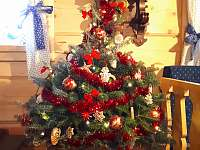 Vánoce u nás - Komorní Lhotka